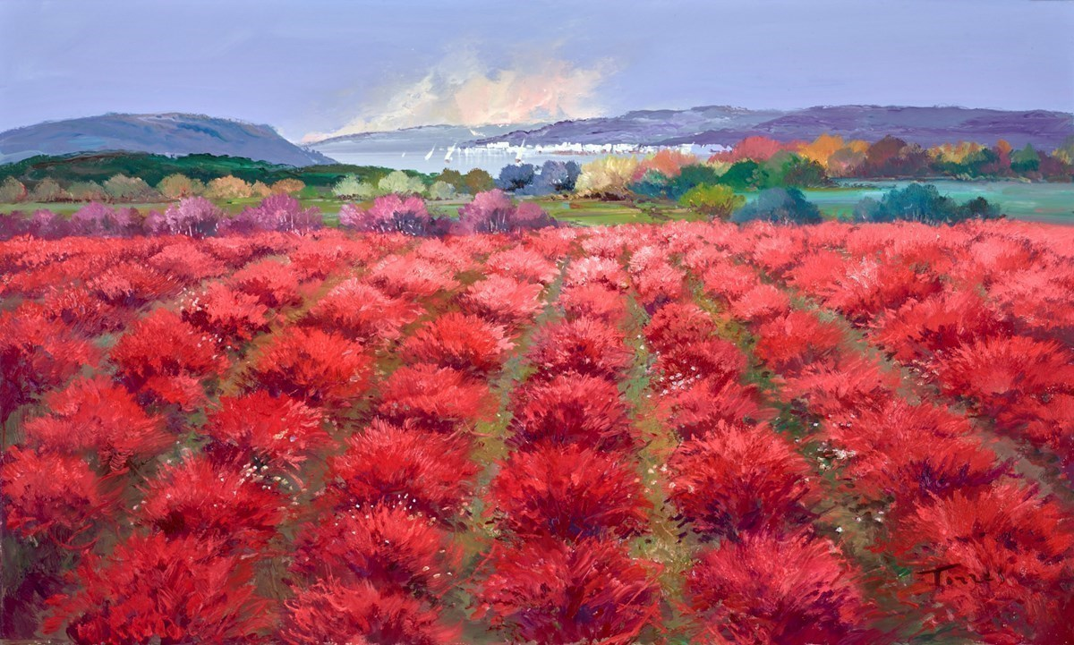 Field of Red III by Torres -  sized 39x24 inches. Available from Whitewall Galleries